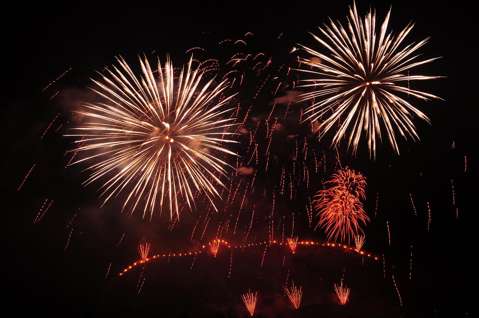 Ett Gott Nytt År önskas alla medlemmar och vänner!